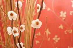 881451_flower.jpg